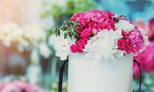 gėlės dėžutėje
