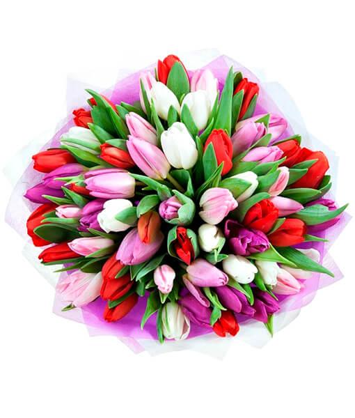 Ivairiaspalves tulpes foto 4