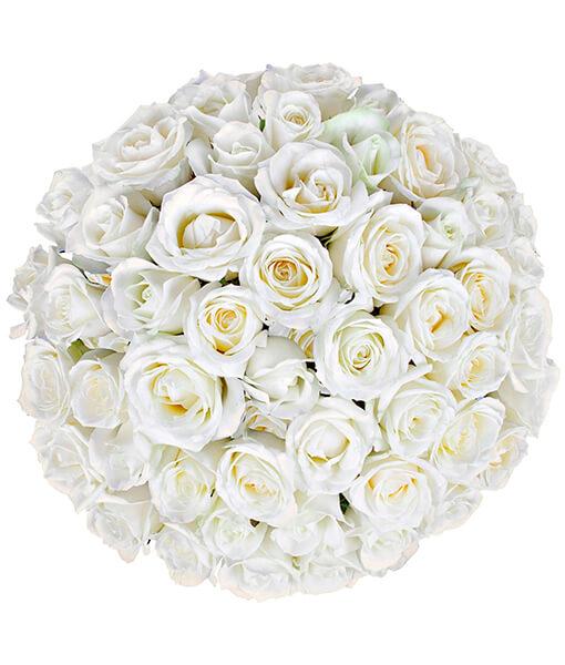 Baltu roziu puokste foto 2