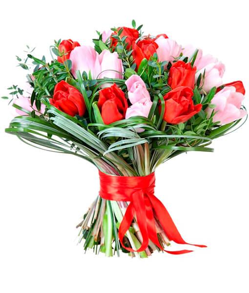 rausvos ir raudonos tulpes foto 2