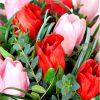 rausvos ir raudonos tulpes foto 3