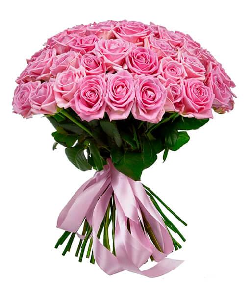 rožines rožes foto 2