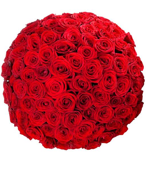 puokste 101 roze