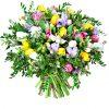 Tulpes su frezijomis
