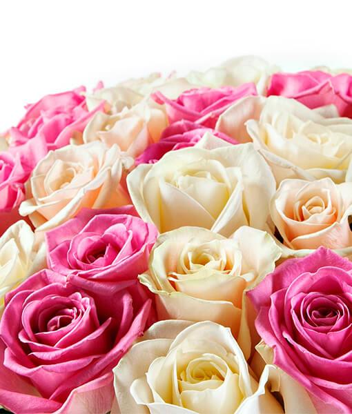 rozines ir baltos rozes foto 1