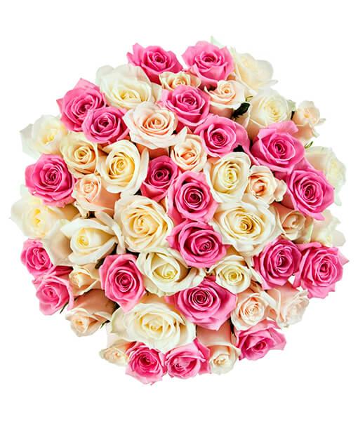 rozines ir baltos rozes foto 2