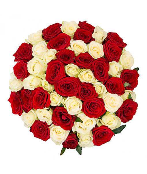 baltai raudonu roziu puokste foto 2