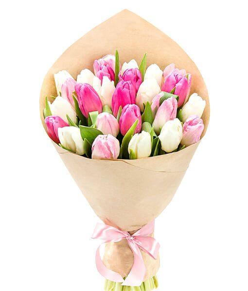 baltos rožines tulpes