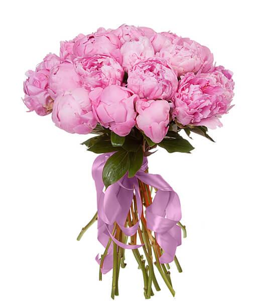 Rožinių bijūnų puokštė